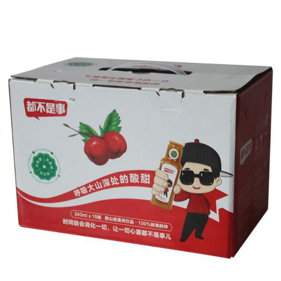 Custom Corrugated Paper Color Packaging Carton Box with Handle