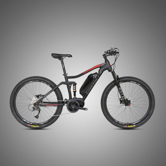 Wholesale 350W Fat Tire Mountain Bicycle Full Suspension Electric Bike
