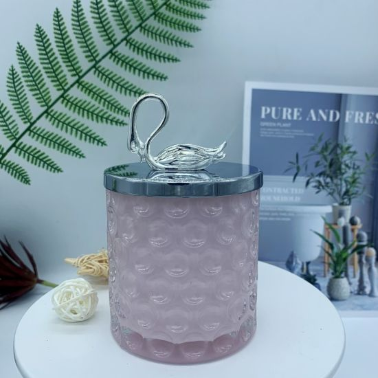 Creat Style Metal Glass Decorative, Storage Box, Candy Jar, Storage Jar, High Appearance Level of Home Decoration Glass Continer, Glass Ware