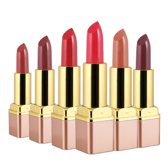 Matte Lipstick Nude Smooth Lip Color Long Lasting Lipsticks Sexy Velvet Lip Stick Long Lasting Kkw Lip Makeup pictures & photos