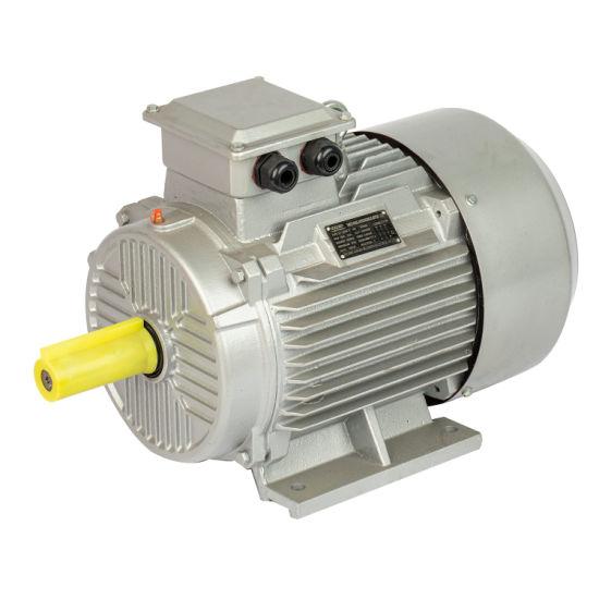 Ie1 Ie2 Ie3 Ye2 Y2 Y Top Terminal Box 380V/660V 400V 415V 460V 50Hz 60Hz F S1 Tefc 10HP 15HP 20HP 25HP 30HP 50HP 75HP 100HP 150HP Three Phase Electric Motor