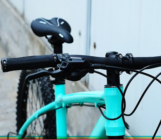 d29fc94a3d9 Eurobike X1 26 /27.5inches 21 Speed Hot Sale Steel Mountain Bike / Mountain  Bicycle