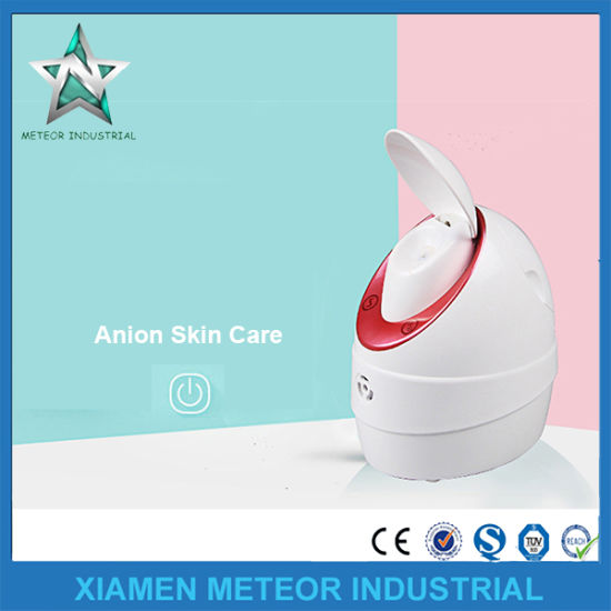 Home Use Portable Beauty Instrument Nano Anion Facial Steamer Equipment pictures & photos