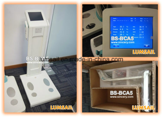 Lumsail Body Composition System Body Analyser Machine Body Analyzer pictures & photos