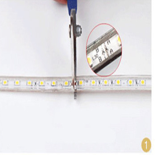 Waterproof Transparent PVC Materials High Voltage SMD3528 LED Strip pictures & photos