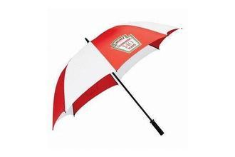 Promotional Golf Umbrella with Auto Open (BR-ST-136)