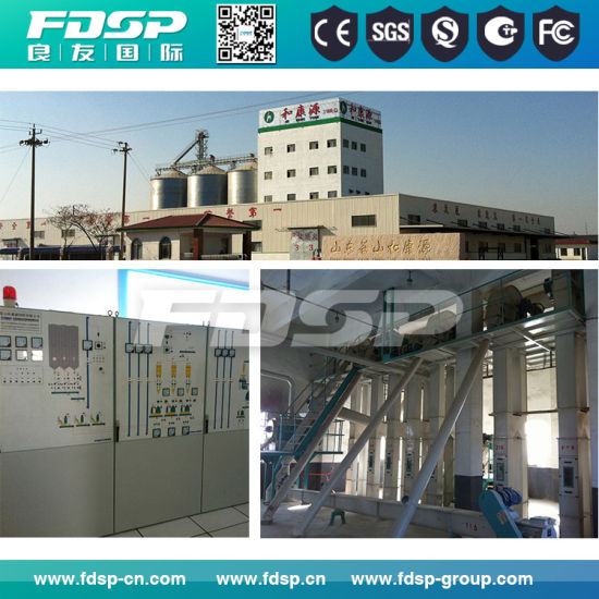 Output Complete Project Feed Pellet Processing Line for Sale pictures & photos