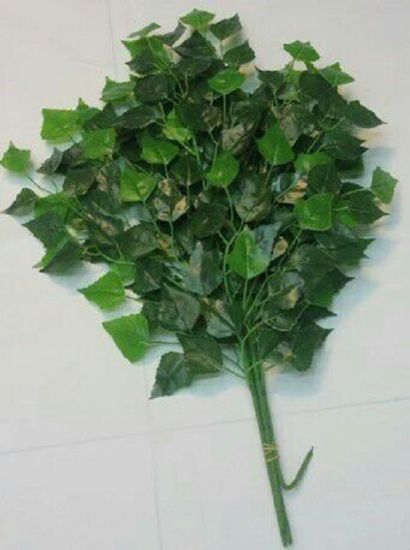 Artificial Plants and Flowers of Green Ficus Gu-Jy902121431 pictures & photos