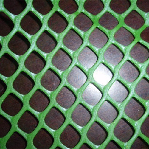 First Grade Plastic Mesh Made in China pictures & photos