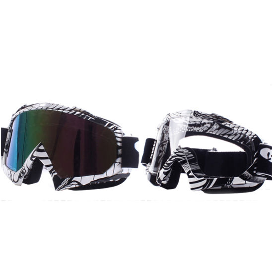 Wholesale Hot Motorcycle Safety Goggles/Racing Goggle (AG010)