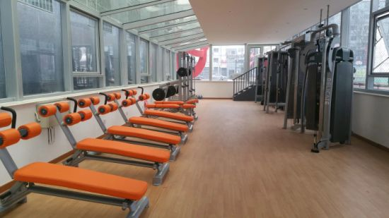 Plate Loaded Fitness Machine / Power Cage (SL50) pictures & photos