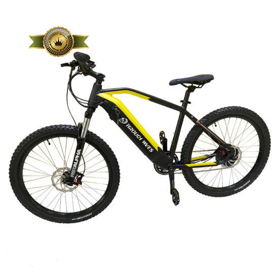 """High Quality 27.5"""" Inch Electric Bike 750W Wattage and 48V Voltage Electric Bicycle Electric Moutain Bike for Sales"""