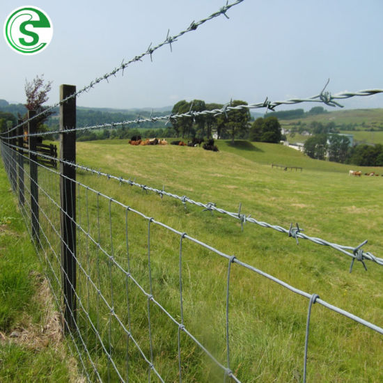 14# X 14# Galvanized Steel Double Strands Barbed Wire for Anti Climb Fence