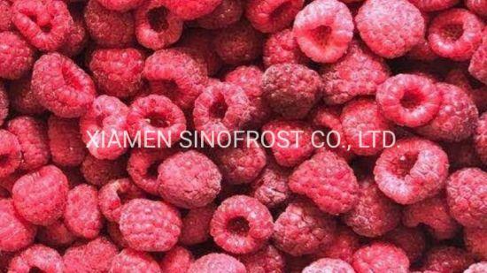 IQF Raspberries Wholes, IQF Red Raspberries Wholes, IQF Cultivated Red Raspberries, Frozen Raspberry, Frozen Raspberries, Red, Wholes/Brokens/Crumbles