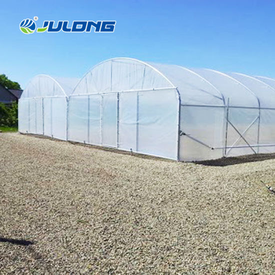 Low Cost 200 Micron PE Film Multi Span Greenhouse for Tomato Cucumber Pepper Planting Hydroponic Systems Commercial Use
