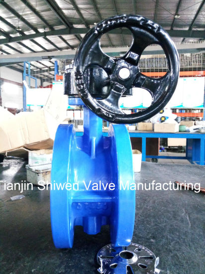 Awwa C504 Qt450 Flange Type Butterfly Valve with Gear pictures & photos