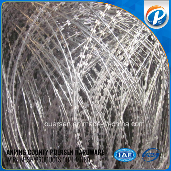 Bto22 Razor Wire Hot Dipped Galvanized Sharp Concertina Razor Wire pictures & photos