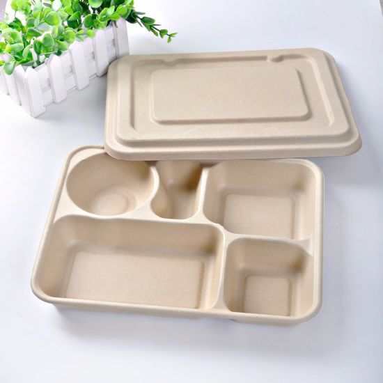 Eco Friendly Biodegradable Disposable Straw Pulp Fast Food Container
