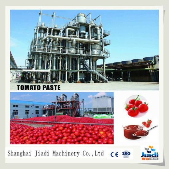 China Tomato Paste Processing Machine/Production Line/Plant