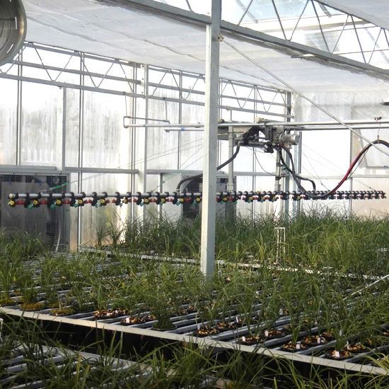 Drip Irrigation System for Horticultural Glass Greenhouse