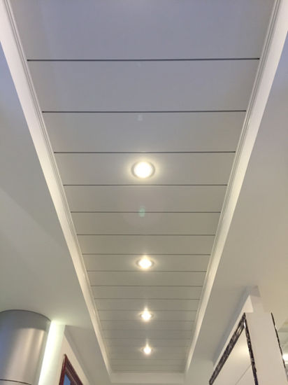 China Matel Ceiling Aluminum G Shaped Panel Ceiling Drop