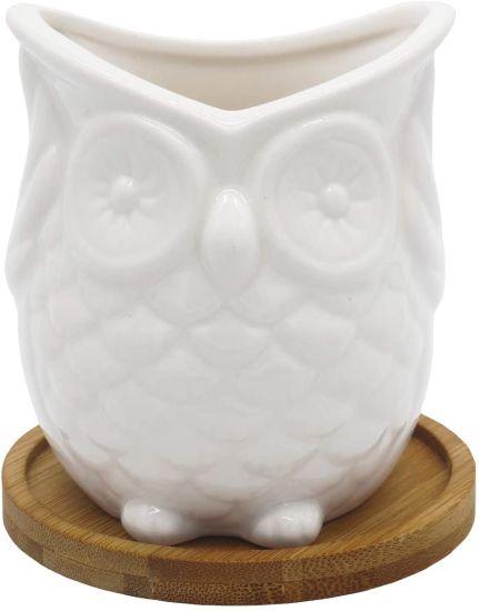 Animal Owl Ceramic Succulent Planters Container Planter Bonsai Potted Pots