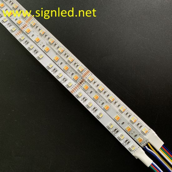 RGBW/Rgbww SMD5050 LED Strip Light 12V/24V LED Tape LED Strips