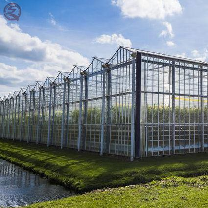 Agricultural PC Sheet Venlos/Polycarbonate Hydroponic Growing Greenhouse for Garden/