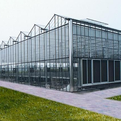 PC Sheet Greenhouse for Vegetable/Flower/Fruits with Complete System/Hydroponic Systems Price