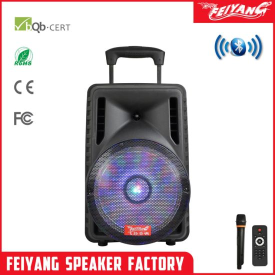 Feiyang Temeisheng Newest 12 Inch Outdoor Multifunctional Portable Dancing Speaker with USB Port F12-7