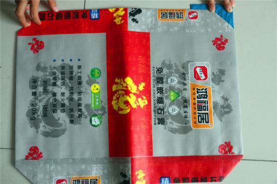 Double Print for PP Woven Bag with Inner Film pictures & photos