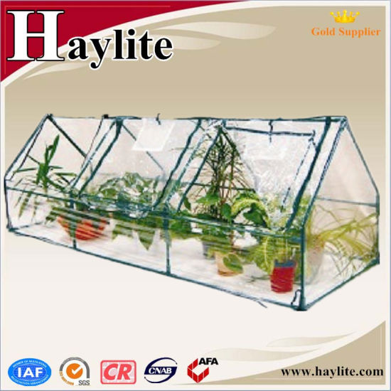 China Portable Easy Assembled Home Garden Grow Plant Mini Green