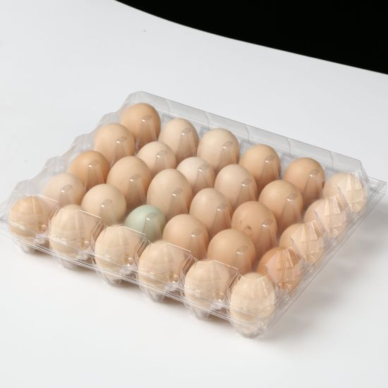 30 Hole Pet Blister Packaging Egg Tray for Sale