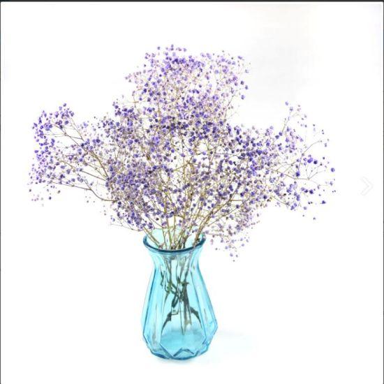 China Colorful Elegant Good Design Cylinder Clear Flower Glass Vase Glass Art Vase Colored Glass Vases China Glass Jars And Glass Vases Price
