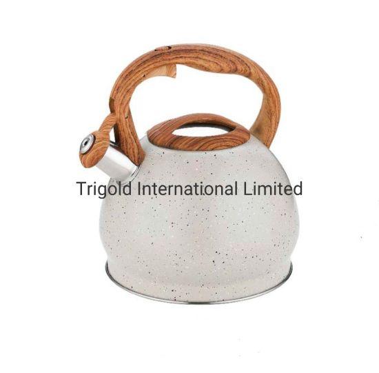 Stainless Steel Whistling Tea Kettle Tgk2949