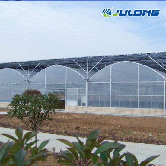 Agriculture Automatic Climate Control System Hydroponic Tunnel Multi-Span Plastic Shade PE Film Greenhouse