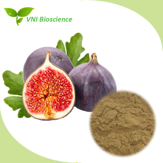 ISO Certified Ficus Carica/Common Fig Powder/Figue Powder/Fig Fruit Powder pictures & photos