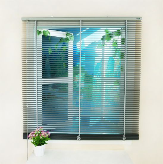 White Color Aluminum Magnetic Mosquito Net Window Latest Window Inserts Blinds pictures & photos