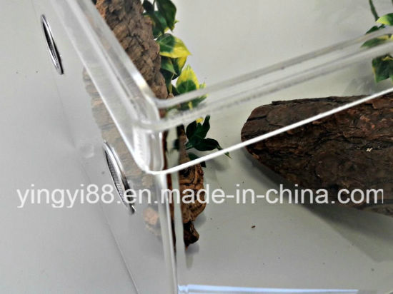 New Acrylic Reptile Terrarium Cage Shenzhen Manufacturer pictures & photos