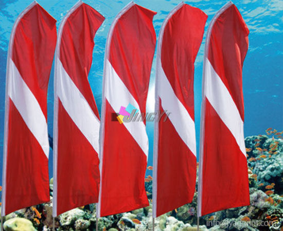 durable UV proof feather swooper beach flag banner pictures & photos