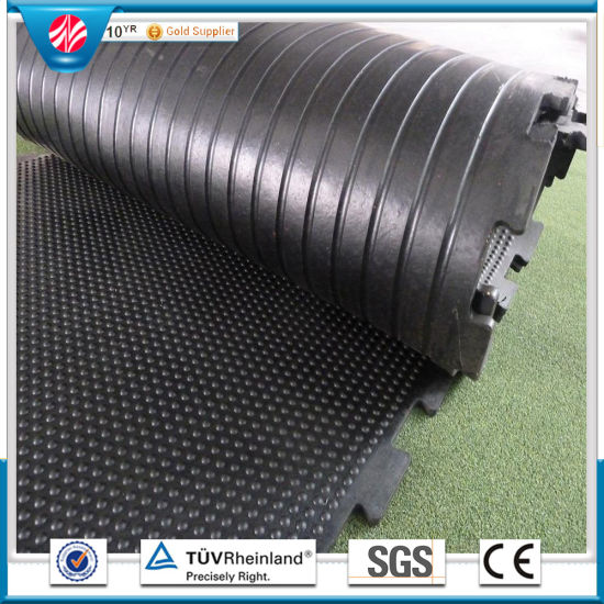 Anti-Slip Rubber Mat/Horse Stall Mats/Anti-Bacteria Rubber Mat for Farm pictures & photos
