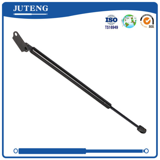 Mini Gas Piston Rod Gas Lift Spring 300n for Industrial