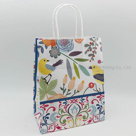 Color Printed Fashion Carrier Paper Bags with Handle