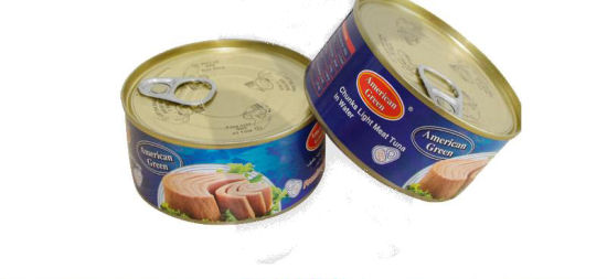 B2b Tuna Fish Canned in Vegetable Oil Supplier From China