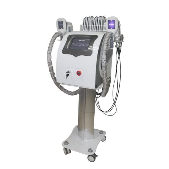 China Fast Fat Loss Slimming Instrument Frozen Fat Cell Machine Cool Technology Weight Loss Machine Kryolipolyse Equipment pictures & photos