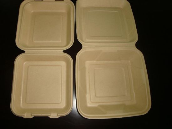 Sugarcane Bagasse Biodegradable Paper Food Container pictures & photos
