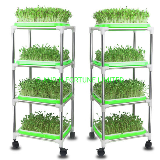 Seed Sprouter Tray Plastic Home Diy Microgreens Seed Trays With Lids China Micro Green Tray And Microgreen Growing System Price Made In China Com