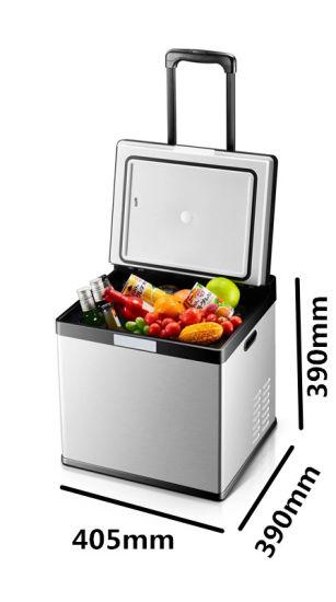 Car Refrigerator with Compressor
