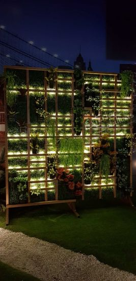 High Quality Artificial Plants of Green Wall Gu20180127172738 pictures & photos
