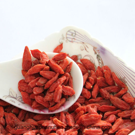 Hot Sale Dried Goji Berry From China pictures & photos